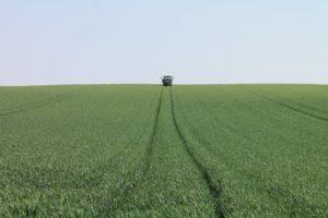 Werle - Landwirtschaft
